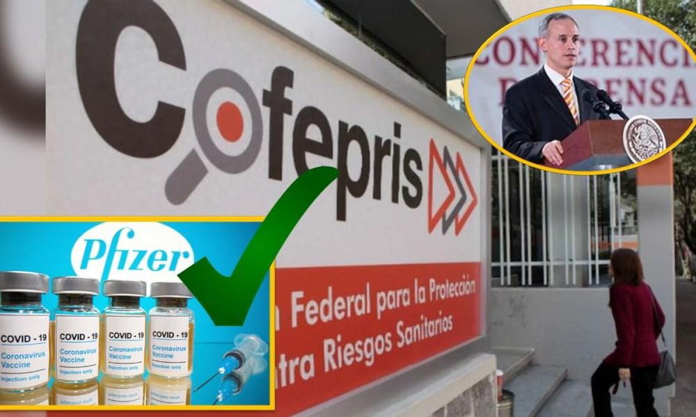 López-Gatell – El gato político News